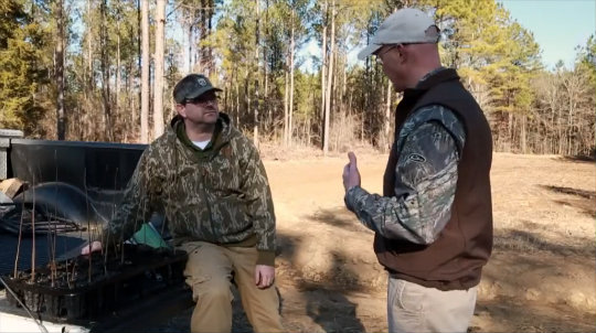 Dove Hunting and Planting Seedlings