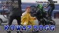 KOWA? DOGG